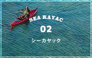 SEA KAYAC|シーカヤック