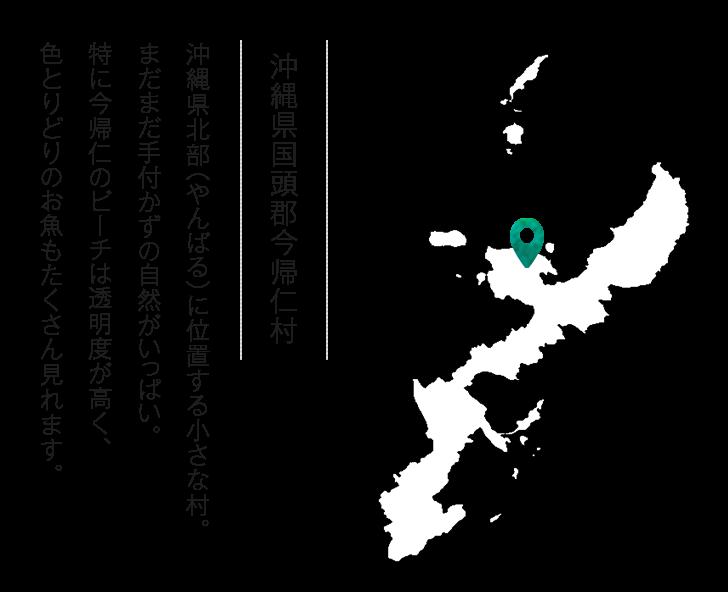 沖縄県北部(やんばる)に位置する小さな村。まだまだ手付かずの自然がいっぱい。特に今帰仁のビーチは透明度が高く、色とりどりのお魚もたくさん見れます。